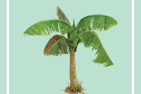 Cây dừa – Mô Hình Sài Gòn Xưa